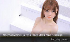Ngentot-Memek-Bareng-Tante-Stella-Yang-Kesepian